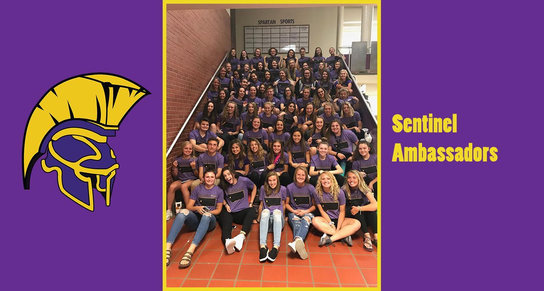 Sentinel High School / Homepage